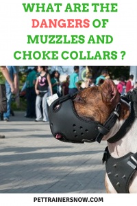 muzzles and choke collars