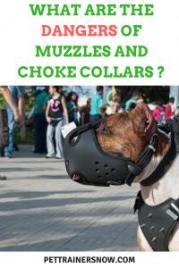 muzzles and choke collars